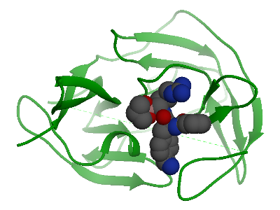 Zika protease with inhibitor